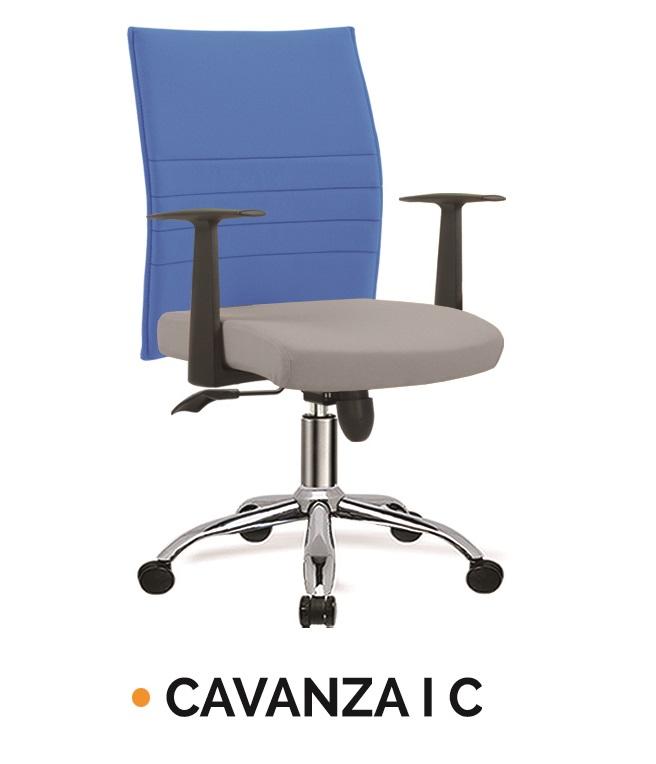 CAVANZA I C