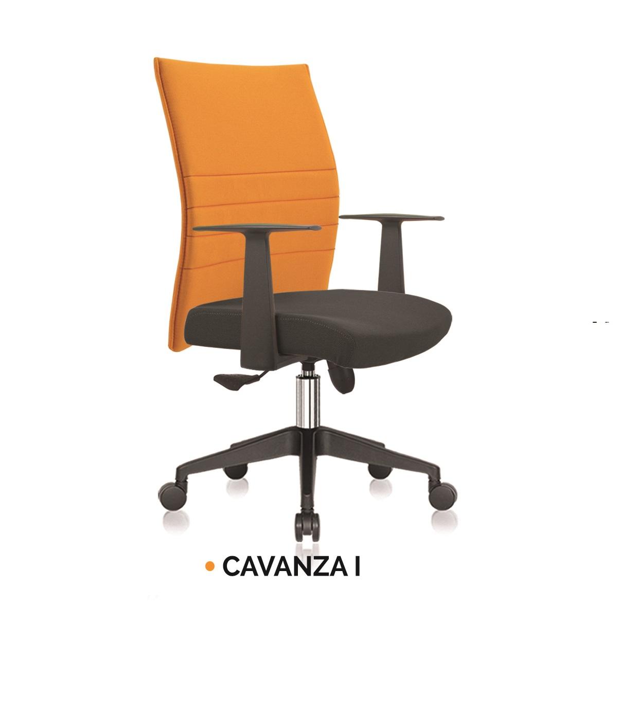 CAVANZA I