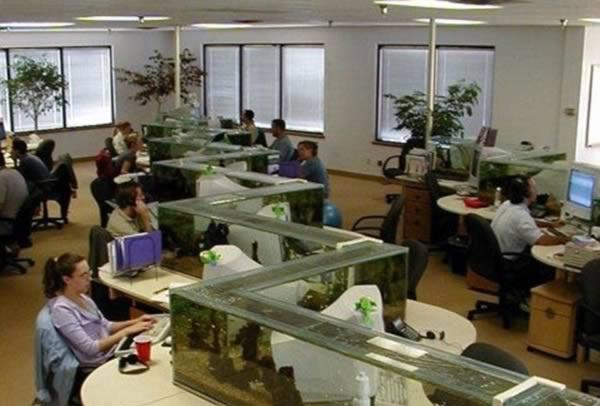 Penyekat Akuarium - Manara Furniture