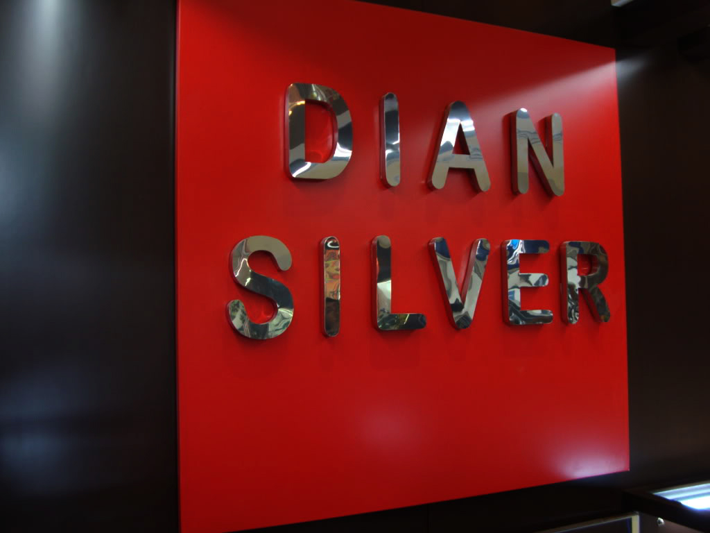 DIAN SILVER _Stainless Mirror