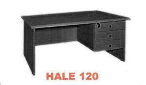 HALE 120