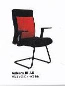 Ankara III AU