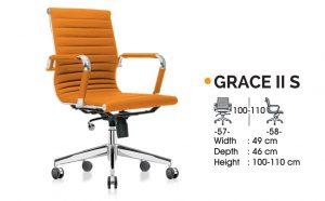 GRACE II S