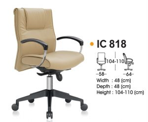 IC 818