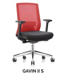 GAVIN II S