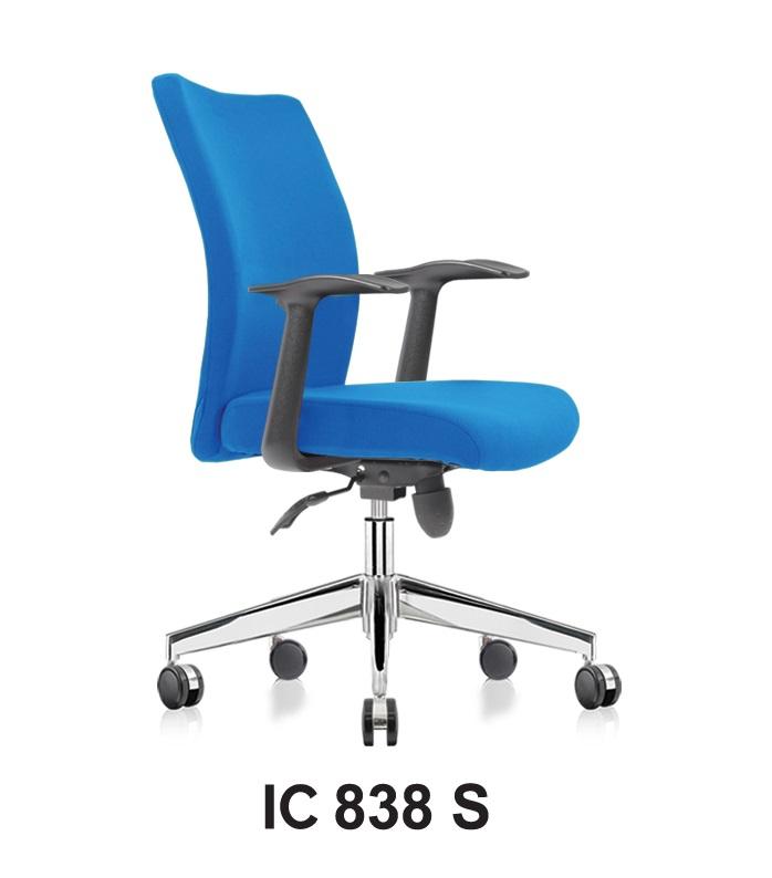 IC 838 S