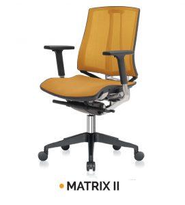 MATRIX II