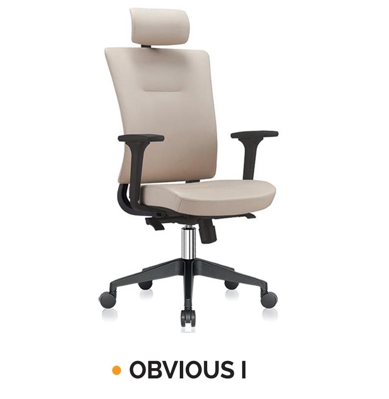 OBVIOUS I